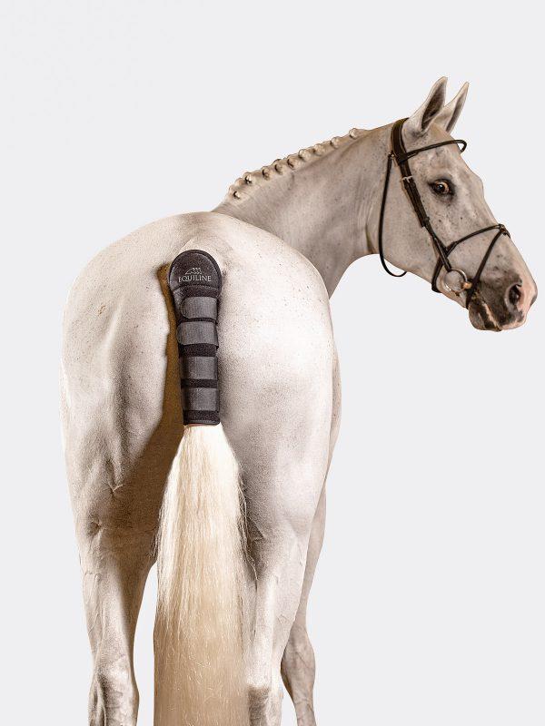protection pour la queue des chevaux modèle noll marque equiline couelur noir porté par un cheval gris