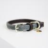 collier pour chien nylon tresse kentucky gris
