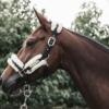 licol nylon mouton naturel cheval kentucky