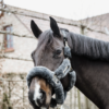 licol de transport pour cheval en mouton kentucky gris