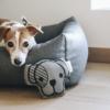 jouet pour chien kentucky