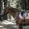 Tapis cheval selle velvet jumping Kentucky vieux rose